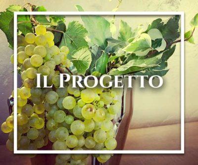 il-progetto-colli-orientali-consorzio-friuli-vini-ristorante-migliore