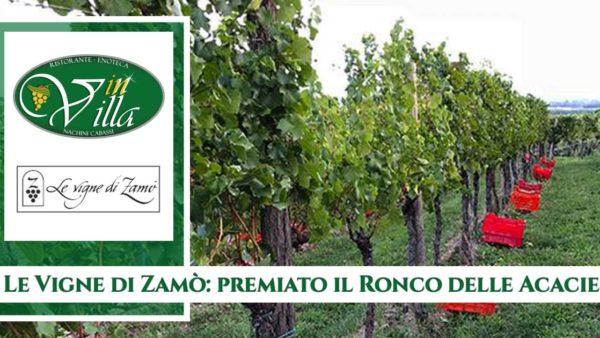 vigne-di-zamo-premiato-il-ronco-delle-acacie